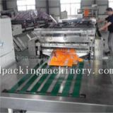 Zipper Seal With Shaped Bag Making Machine