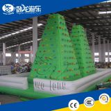 rock climbing wall for kids, indoor kids used rock climbing wall ,rock climbing wall price