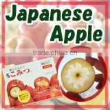Safe sweet bulk fresh fruit Komitsu apple from farms around Japan