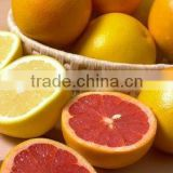 High quality Ascorbic Acid (Vitamin C ) CAS 50-81-7