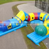 inflatable worm tunnel/inflatable caterpillar toy for sports game