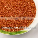 Best selling red millet,new crop