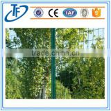 PVC coated Euro fence / fencing materials / Holland wire mesh fence (FACTORY MANUFACTURER)