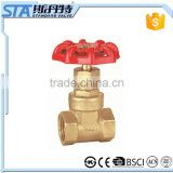 ART.4012 NPT BSP F/F Thread ISO228 CW617N Copper Brass Forged Gate Valve with Casting Iron Handlewheel for water, oil, and gas