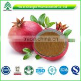GMP factory supply high quality natural Pomegranate Bark Extract powder