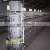 Hot sell layer or Broiler H type poultry cage