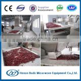 Industrial red dates/palm dates microwave drying & sterilizing machine