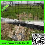SupplyUV resistant extruded black Bird Control Netting protecting crops from butterflies, birds, pigeons, rabbits, squirrels etc
