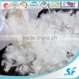 Duvet and Pillow Filling material Washed White Goose Feather 2-4cm
