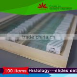 High quality 100pcs Set human and animal anatomy tissue slides