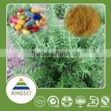 Factory Supply Organic Chia Seed Extract,Carnosic Acid 5%,25%