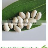 2016 Crop Dry Export Broad Beans Japanese Type For Sale