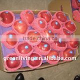 huaniu apple in fresh from gansu(85%red)