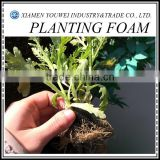 Health Soilless Culture Of Greenhouse Vegetables Planting Foam