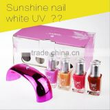 high quality gel polish set/ nail art gel kit soak off gel polish kit