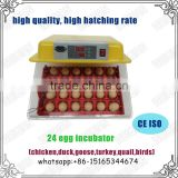 Weiqian mini incubator for birds for sale in China WQ-24