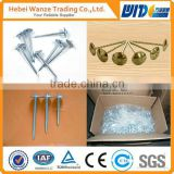 High quality ring shank common nail/common nail bolt/roofing nail