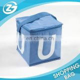 Wholesale Customer's Size and Logo Printing PEVA Liner Insulated Cooler Bags