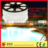 chinese factories wholesales high quanlity 110/240V flexible LED light strip ready swimming pool
