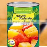 Vietnam Canned Fruits Tropical Cocktail Fruits in Syrup