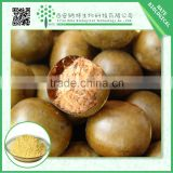 China Factory Supply Top Grade Fructus Momordicae Extract Mogroside V 50%