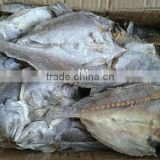dry salted fish High Quality dried brown croaker fish