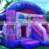 Cheap commercial princess theme inflatable bouncer combos CC067