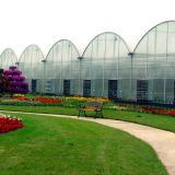 Large size plastic film multi span agricultural greenhouses