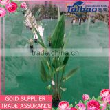 Made in China real looking evergreen ornamental plants artificial tree with large leaves