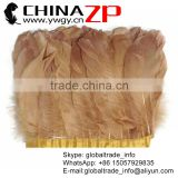 ZPDECOR Beautiful Color Excellent Quality Dyed Goose Satinettes Feathers Light Brown Trim Fringe