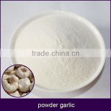 pure white powder garlic