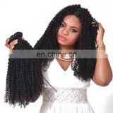 Best Selling Virgin Mongolian Kinky Curly Hair human hair bundles with closure