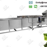 Leafy Vegetable Washing Machine