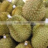 Fresh Durian from Thailand