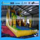 Innovative chinese products inflatable dolphin water slide from alibaba store