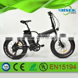 cheap folding electric bicycle mountain bike fat tire hot sale