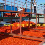 Complete tomato paste/sauce/ketchup/puree production line