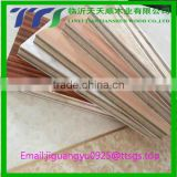 building materials 2-18mm black/brown film faced plywood sheet , poplar core cheap film faced plywood