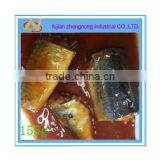 salted of 155g canned mackerel fish in tomato sauce(ZNMT0038)