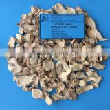 Dried Sliced Ginger - Vietnam best selling product