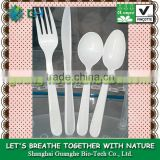 100% biodegradable pla plastic spoon and fork cutlery/utensil- disposable spoon knife forks set