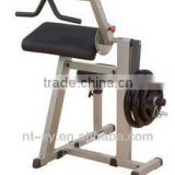 Biceps & Triceps Machine