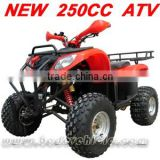 250cc Quad <b>Off</b> <b>Road</b> <b>ATV</b> 250cc Quad Bike(MC-352)