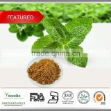 100% Natural Peppermint Extract 10:1, Peppermint Extract Powder, extract Peppermint price