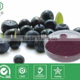 Low Price 100% Natural Organic Acai Berry Extract Powder, Acai Berry Capsules, Anthocyanin
