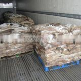 Wet Salted and Dry Salted Donkey hides, cattle hides for export