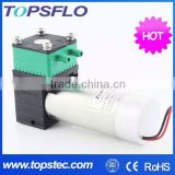 DC Brushless Diaphragm 6v 12v 24v pump for car model 4S shop sales office Aroma Diffusion System