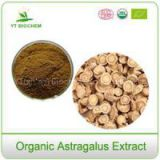 Organic Astragalus /huangqi Root Extract Powder