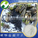 Sesame Extract Sesamin Powder