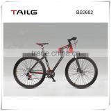 tailg smart ebike relaxing sports 36V durable vehicle electric fat bike BS2602 for sale
